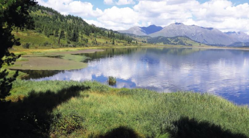 Исцеляющие силы природыВосточного Казахстана